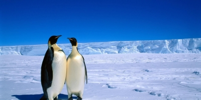Is Antarctica A Possibility For A Free Society?